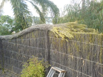 Brushwood Fence design