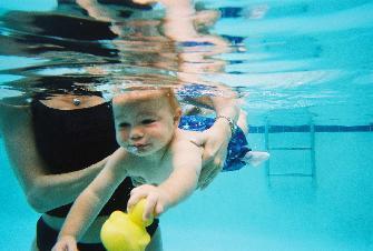 Swimming Pool Fence Legislation